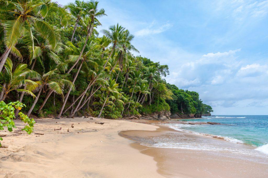 Stunning Caribbean beach